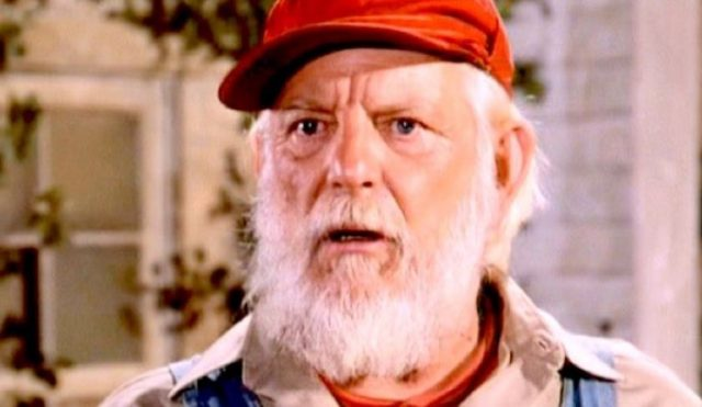 Denver Pyle Net Worth Before His Death: How Rich Was The Film Director?
